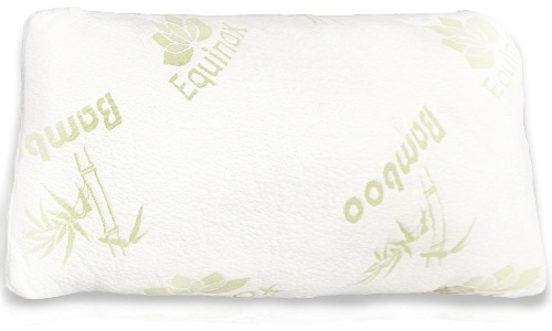 Equinox International Pillow Review
