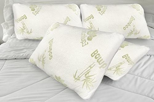 Equinox International Queen Pillows Review